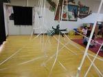 クモの巣.jpg